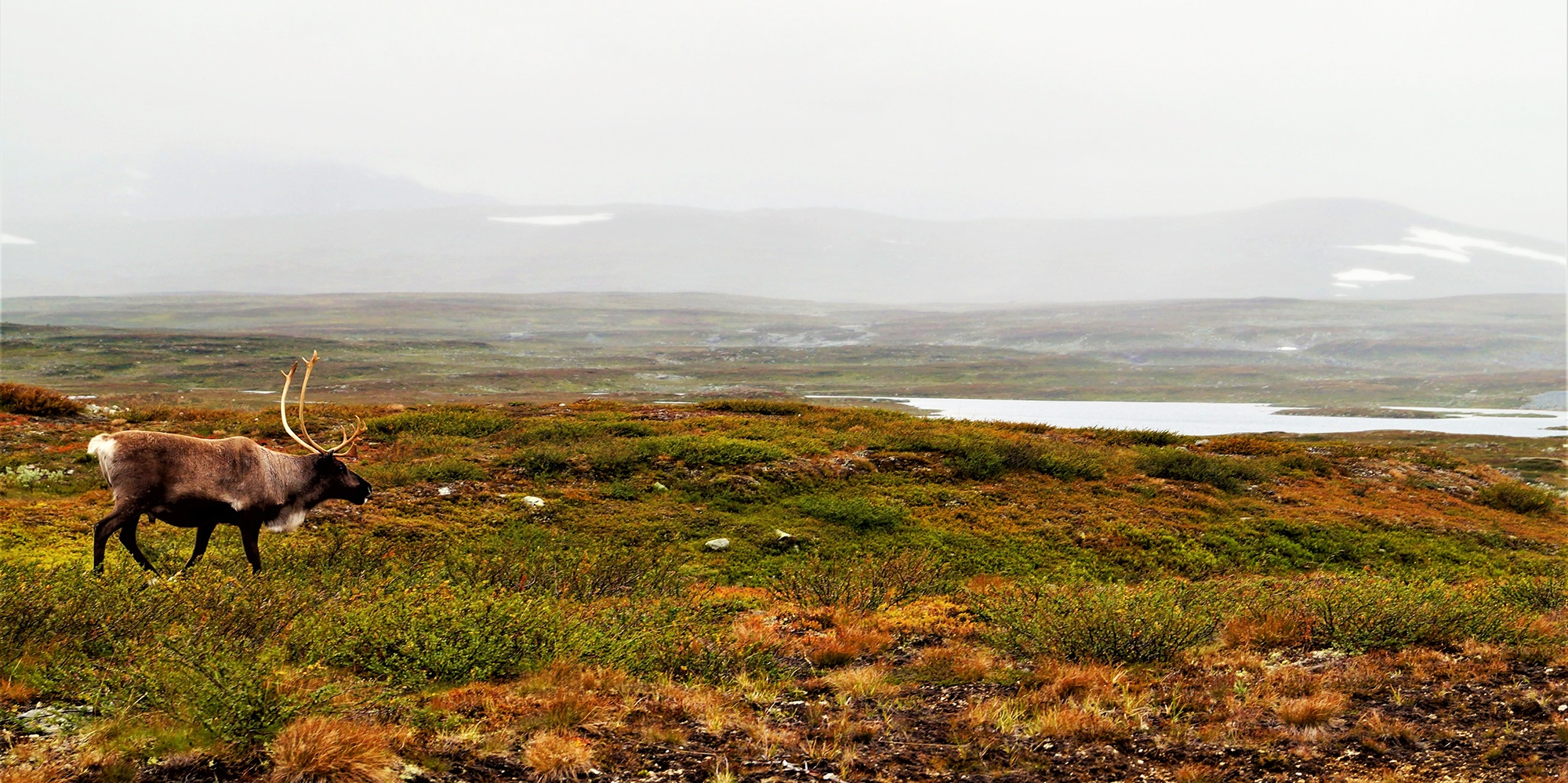 <span>Schweden Rundreise bis nach Lappland - Teil I</span>