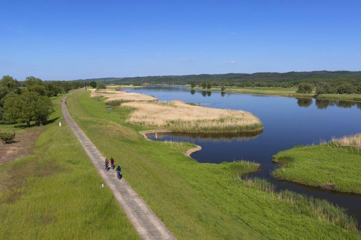 Radfahren im Nationalpark unteres Odertal